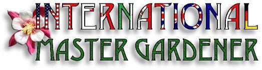 International MG logo