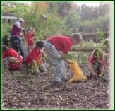 Children's Cutting Garden